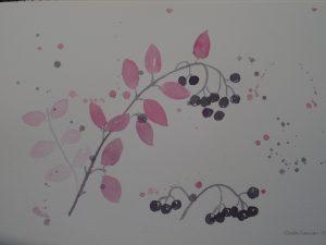 Marja-aronia akvarelli